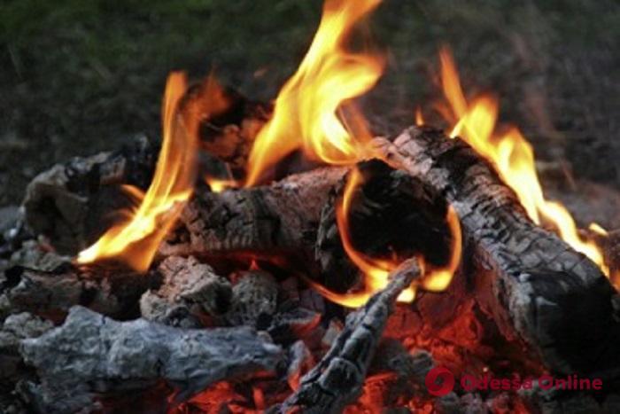В Одессе 11-летний мальчик получил тяжелые ожоги при разведении костра на пикнике