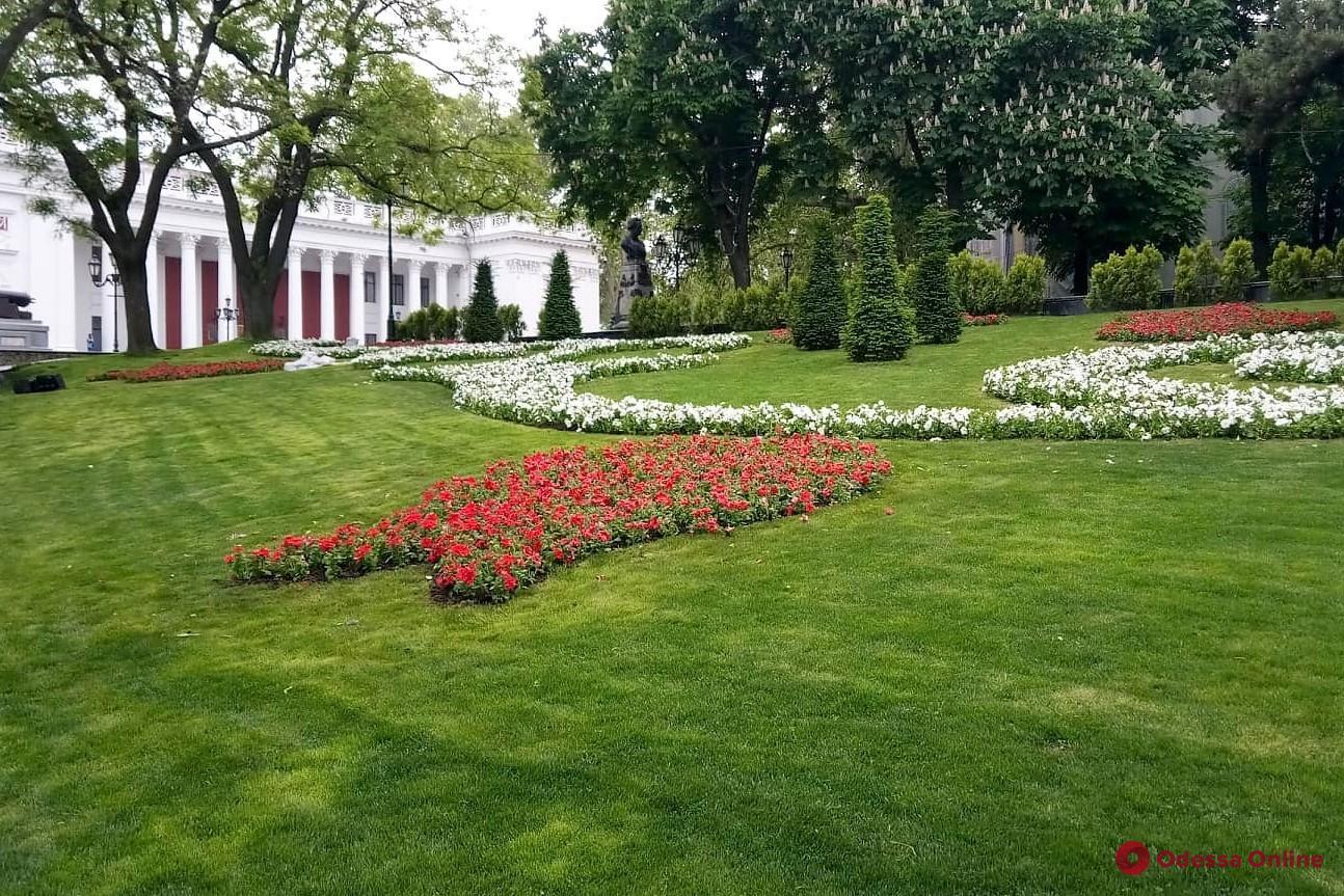 В Стамбульском парке высадили летние цветы