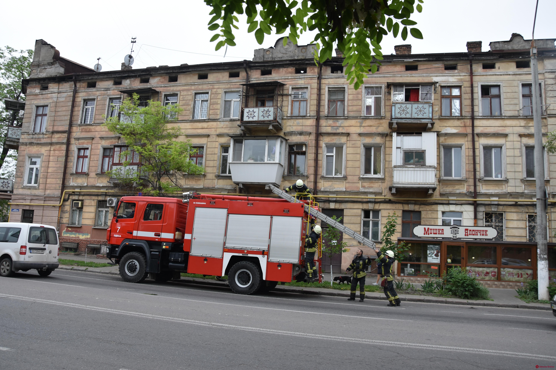 На Молдаванке спасали кошку