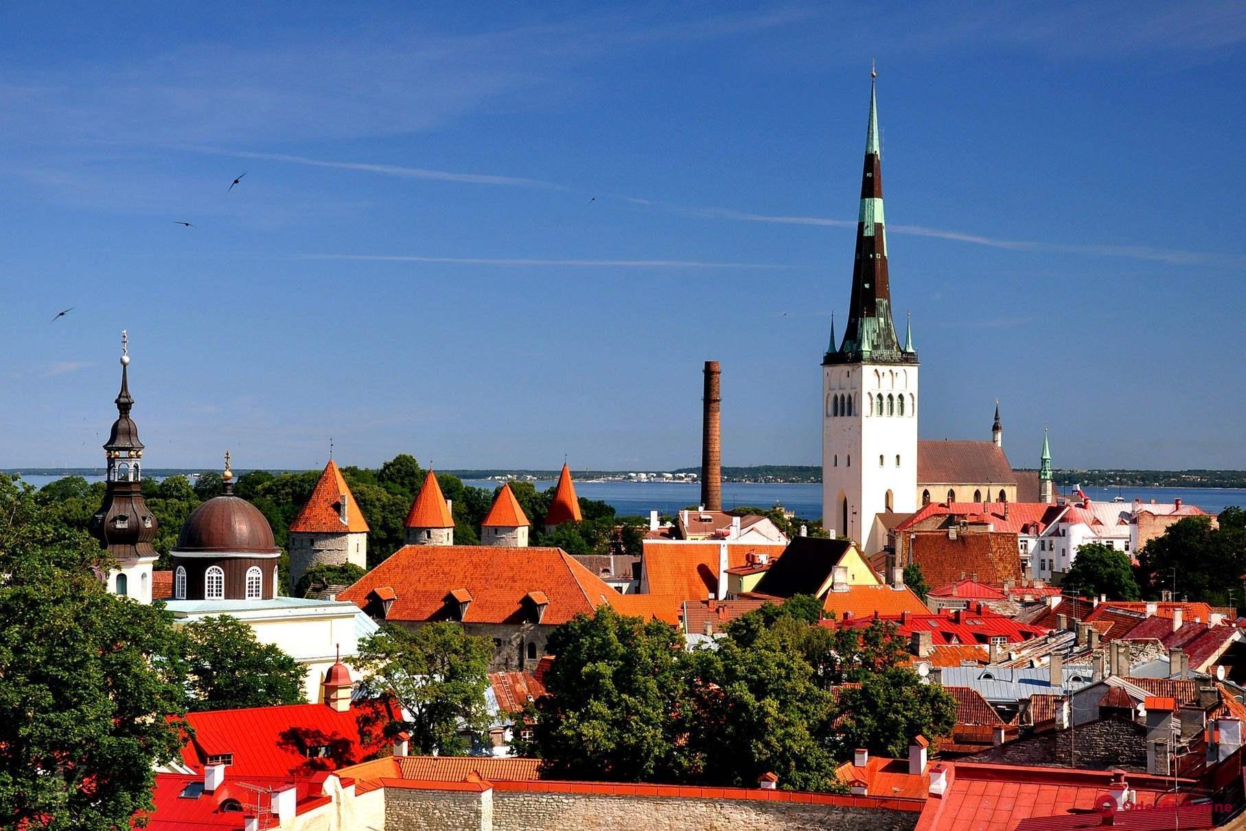 Одесситы могут чаще летать в Таллин