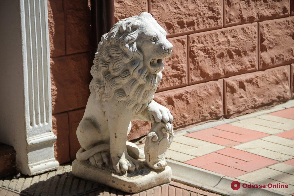 Зелень, львы и леопард: колорит одесской Слободки