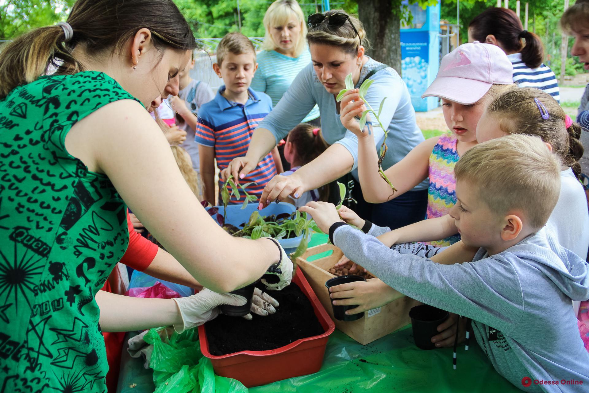 В Одесском зоопарке дети высаживали цветы и кормили верблюдов (фоторепортаж)