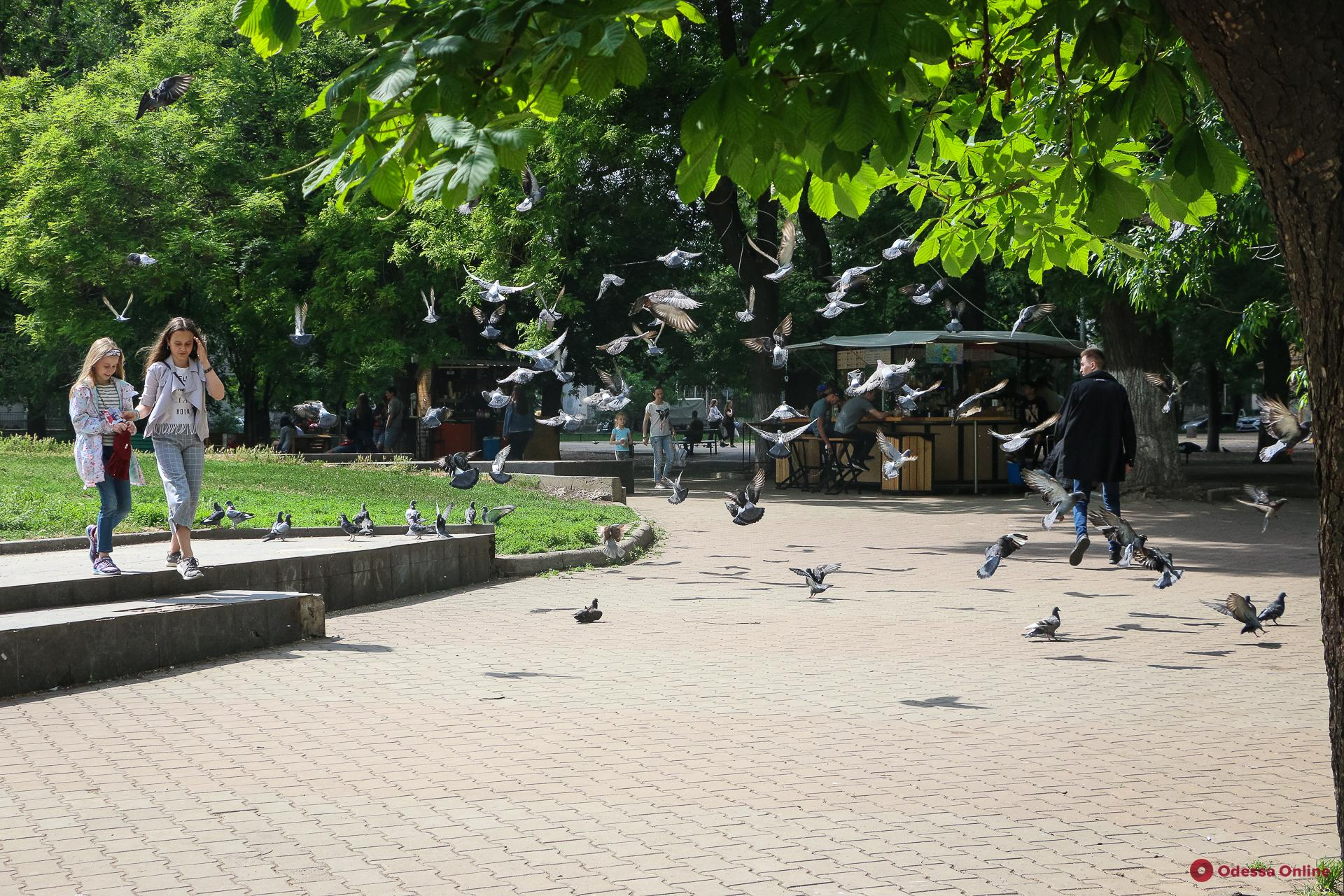 Одесса в лицах: прогулка по Старобазарному скверу (фоторепортаж)