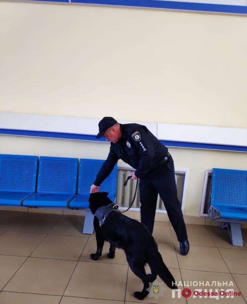 В Одесском аэропорту ищут бомбу (обновлено)