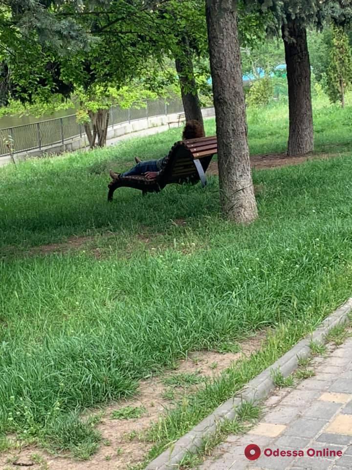 Еще ближе к Европе: в одесском парке установили первую в городе скамью-топчан