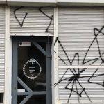spider (10)