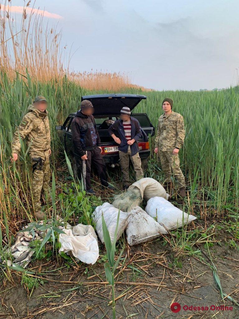 В Одесской области поймали браконьеров с уловом на 65 тысяч