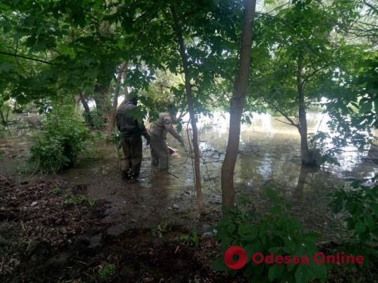 Утонула в реке: жительница Одесской области покончила с собой на глазах у сына