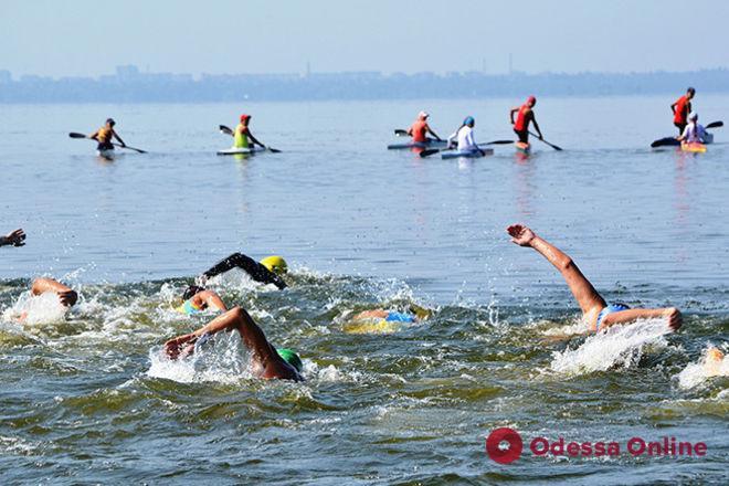В Одессе пройдут международные соревнования по плаванию на открытой воде
