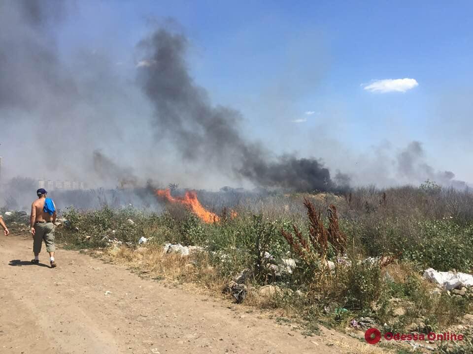 Возле кладбища в Крыжановке тушили пожар