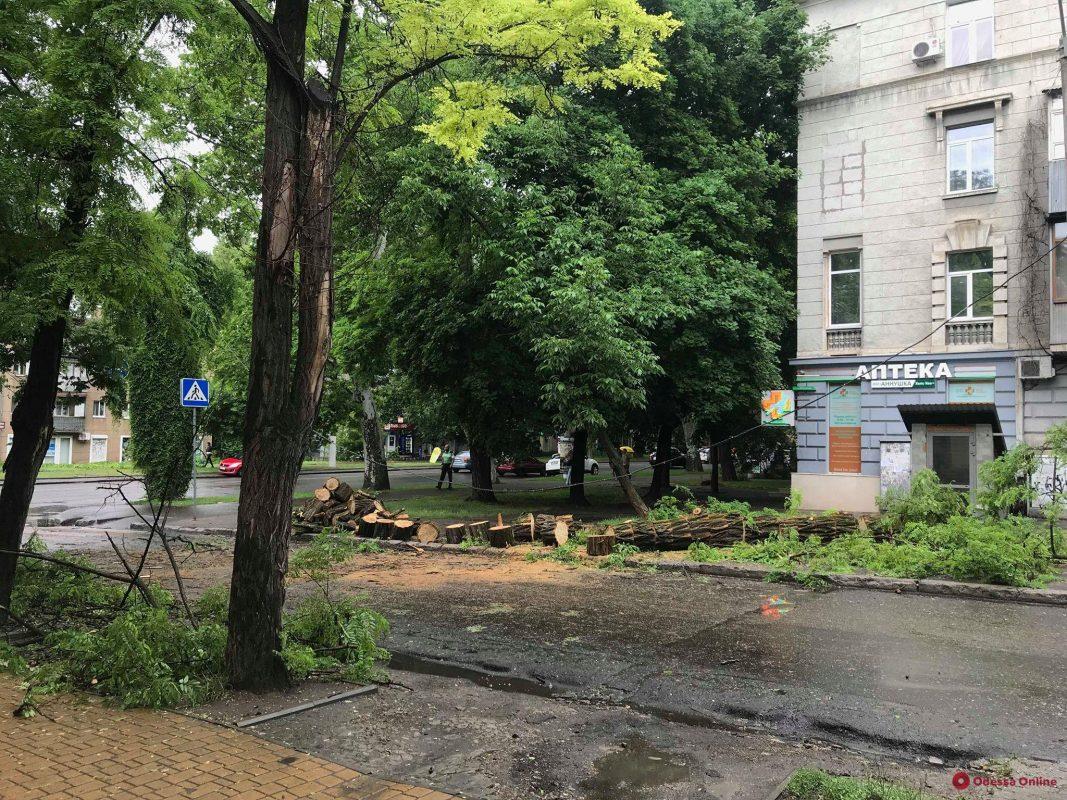 Последствия непогоды в Одессе: повалены шесть деревьев и большие ветки