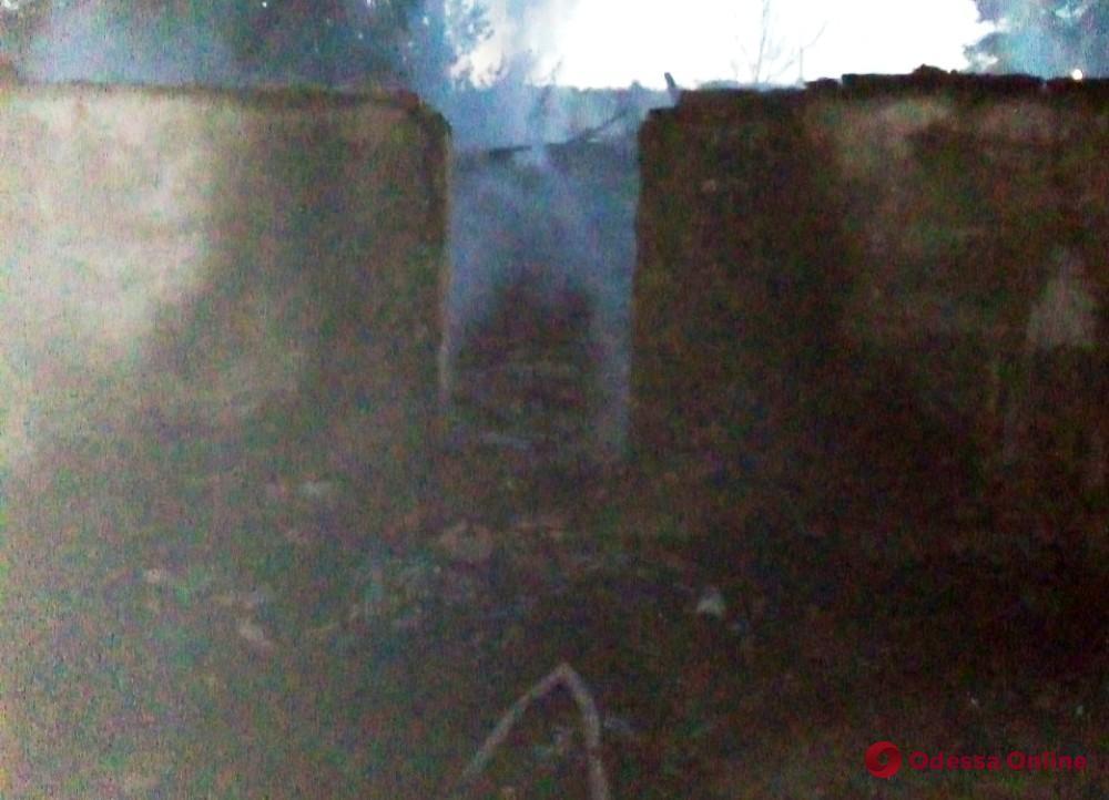 В Одесской области во время пожара заживо сгорел домашний скот