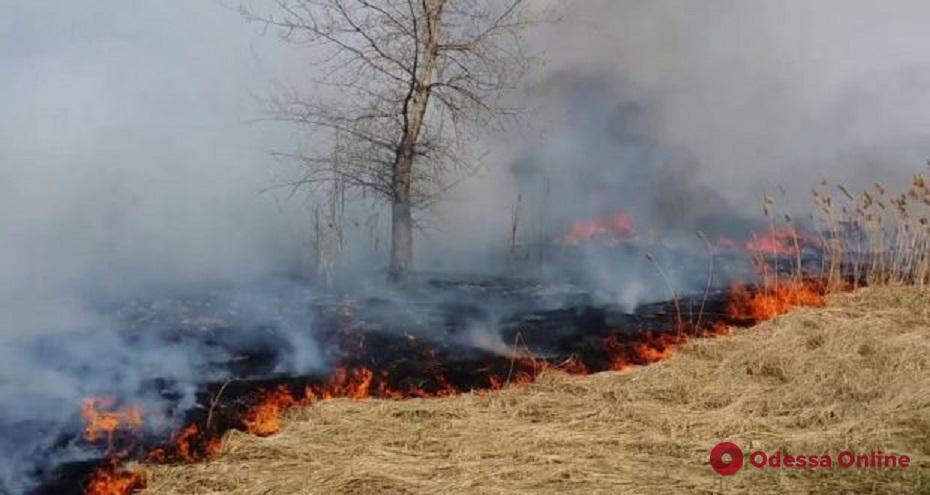 Одесская область: за одни сутки спасатели 27 раз тушили сухую траву и камыш
