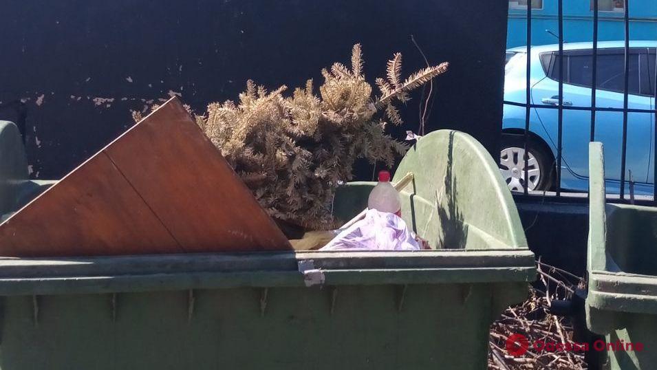 Подходил к концу первый месяц лета: одессит попрощался с новогодним деревом (фотофакт)