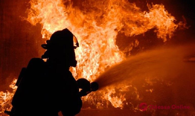 В поселке Авангард спасали складские помещения от огня