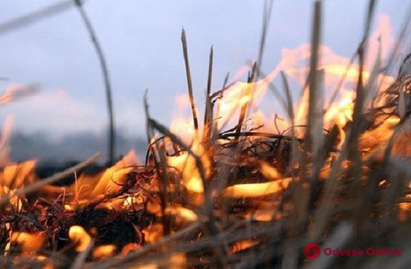 Возле Чкаловского пляжа в Одессе произошел пожар