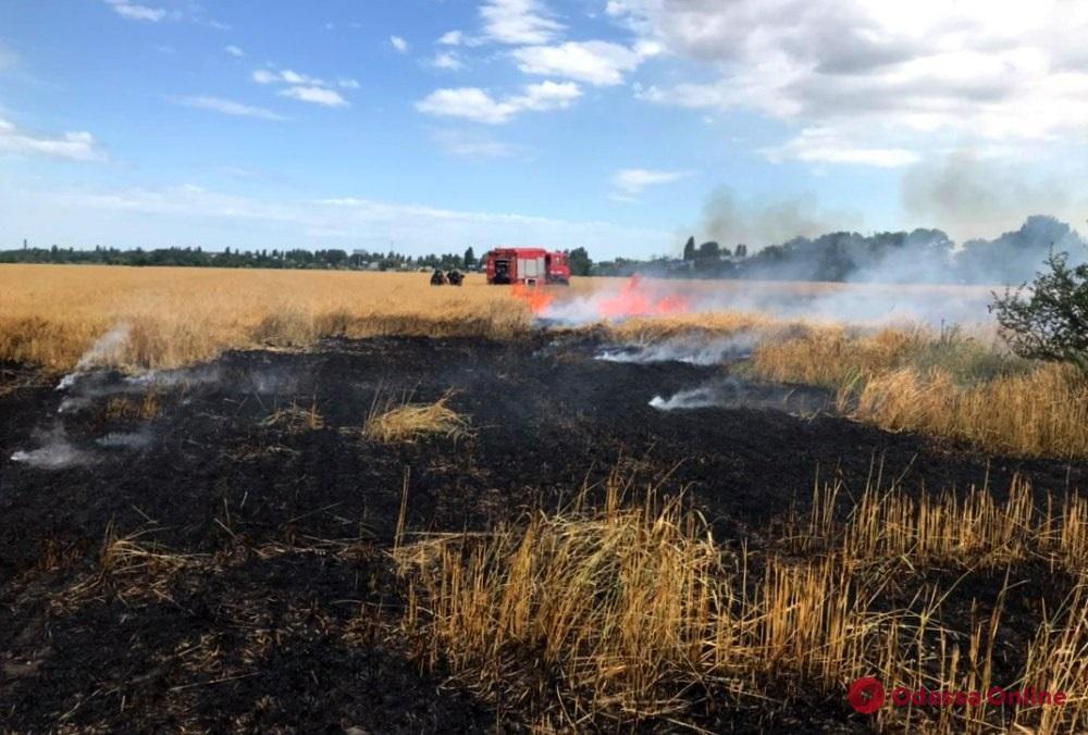 Под Одессой тушили масштабный пожар