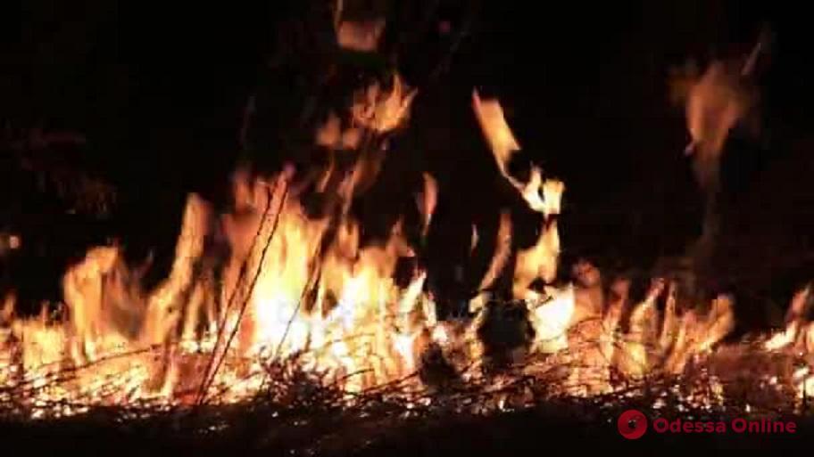 Ночью в сквере возле Одесской облгосадминистрации тушили пожар (видео)