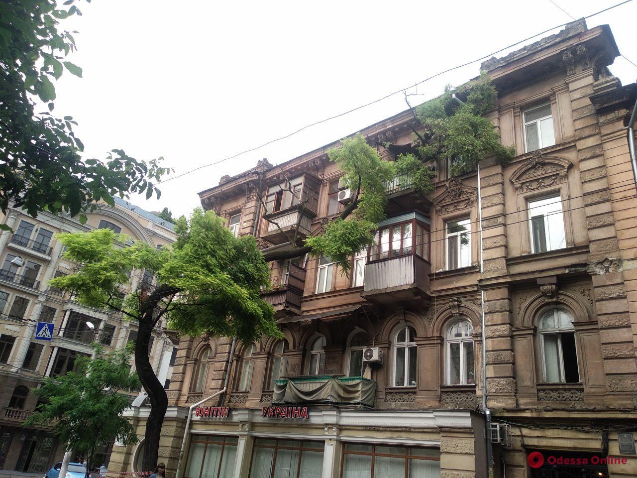 В центре Одессы акация рухнула на балкон и разбила окна