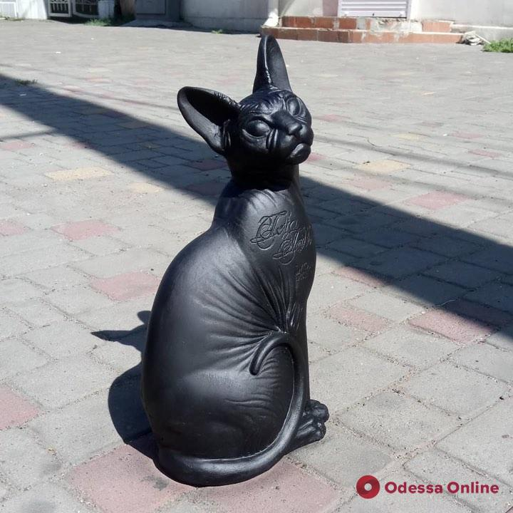 В центре Одессы «поселился» татуированный кот