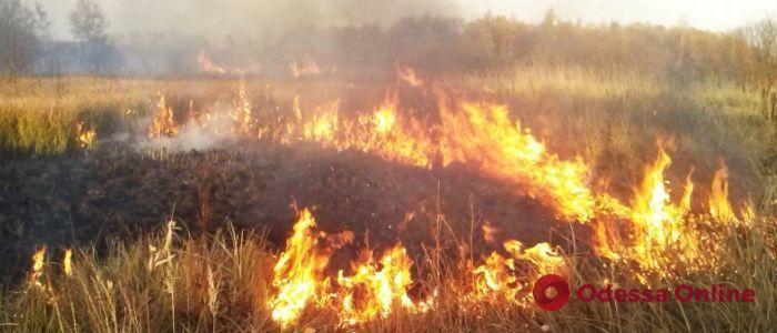 Одесская область: за одни сутки спасатели 26 раз тушили сухую траву и камыш