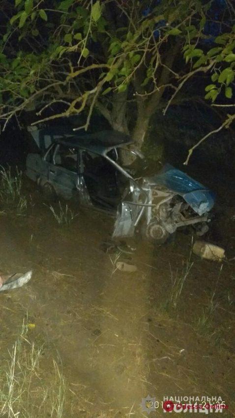 В Одесской области Toyota врезалась в дерево — погиб молодой мужчина