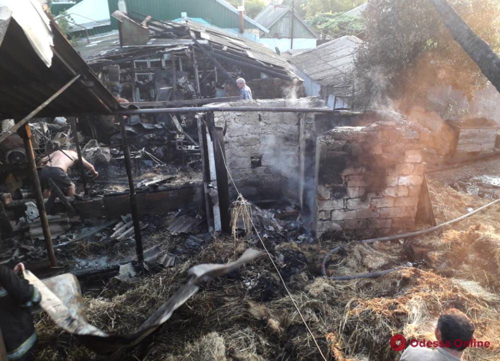 В Одесской области сгорели сарай и сенохранилище