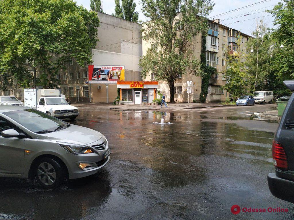 На Сегедской из-под земли бьет фонтан (видео)