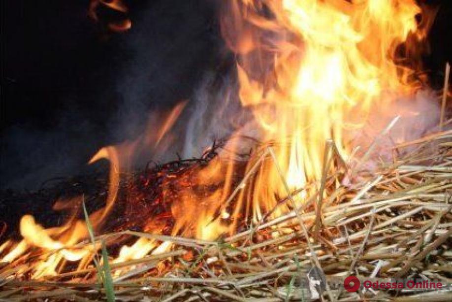 В Одесской области на ферме сгорели 700 тонн сена (обновлено)