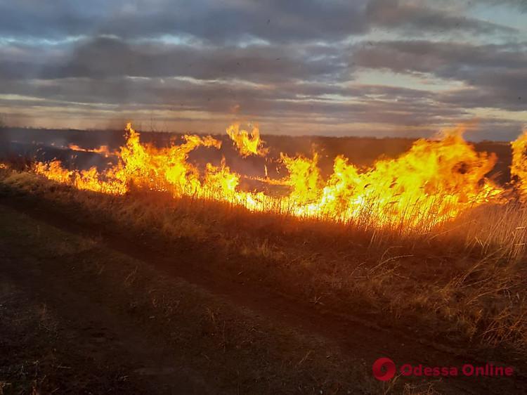 За сутки в Одесской области сгорели более четырех гектаров сухой травы
