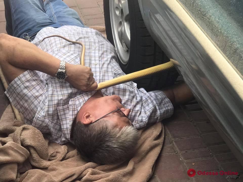 Директор Одесского зоопарка спас краснокнижную змею