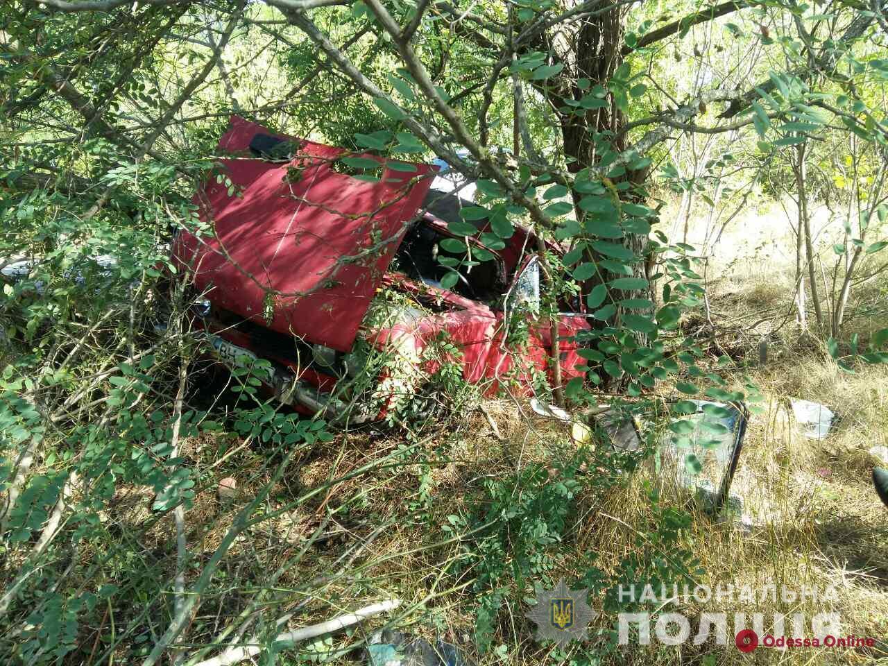 В Одесской области ВАЗ съехал в кювет и врезался в дерево – водитель погиб