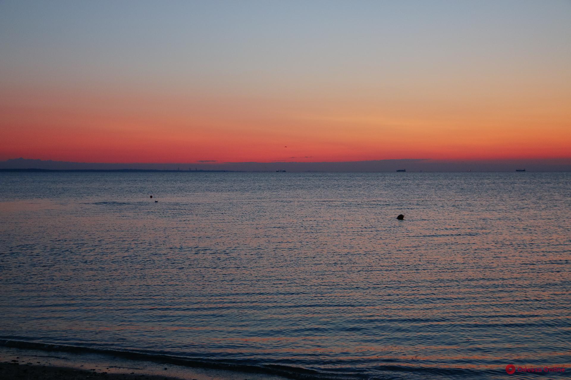 Морская вода на всех одесских пляжах соответствует нормам