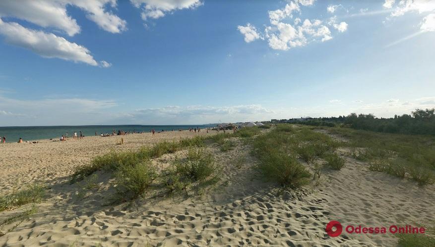 В Затоке вернули местной громаде 16 земельных участков на побережье