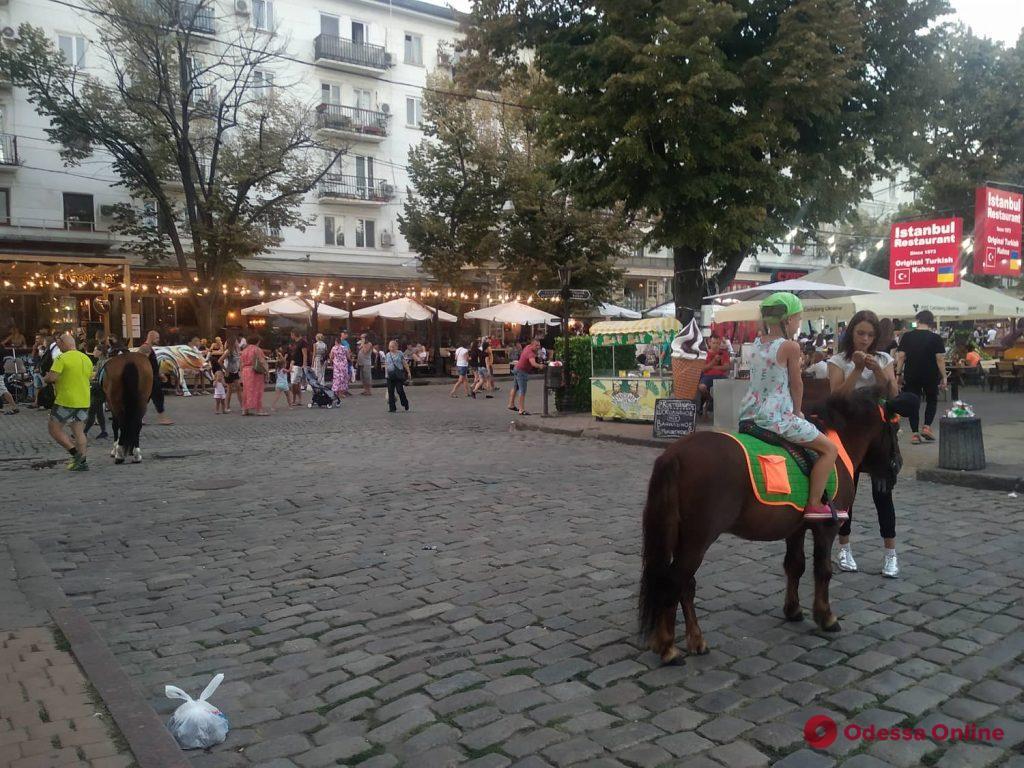 На Дерибасовской продолжают эксплуатировать лошадей