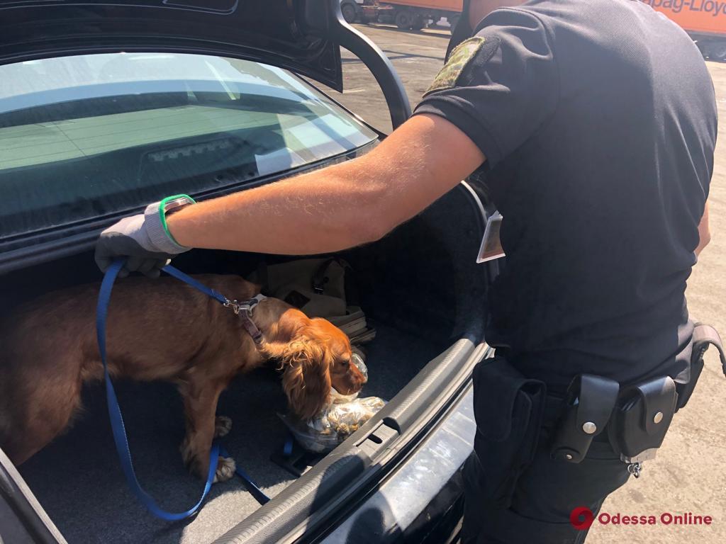 В прибывшем из США авто одесские пограничники нашли наркотики