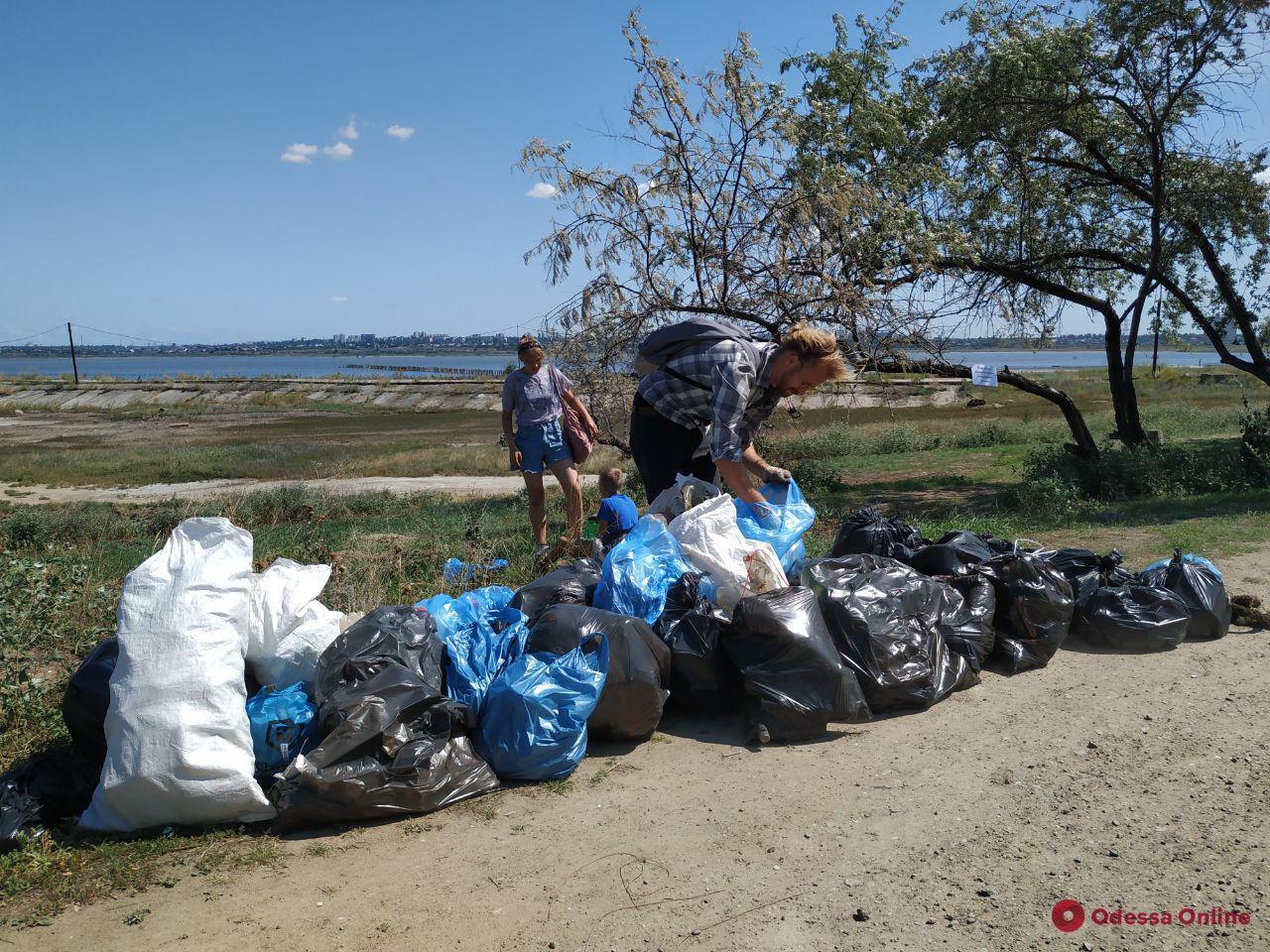 Одесситы провели субботник на побережье Куяльницкого лимана (фото)