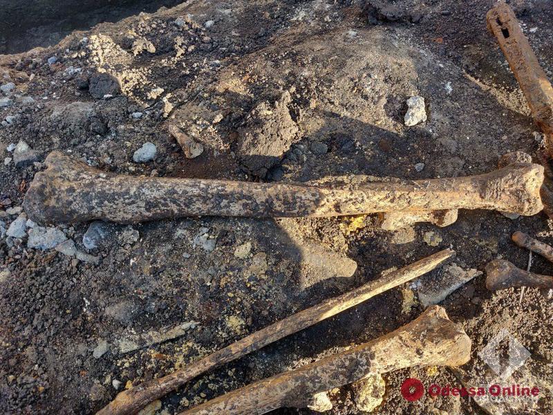 Одессит нашел под фундаментом дома человеческие кости