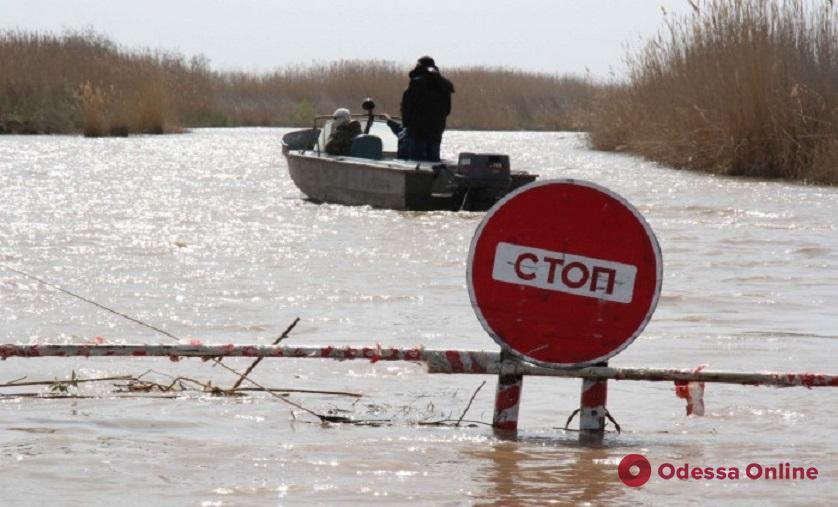 В Одесской области запретили ловить кефаль