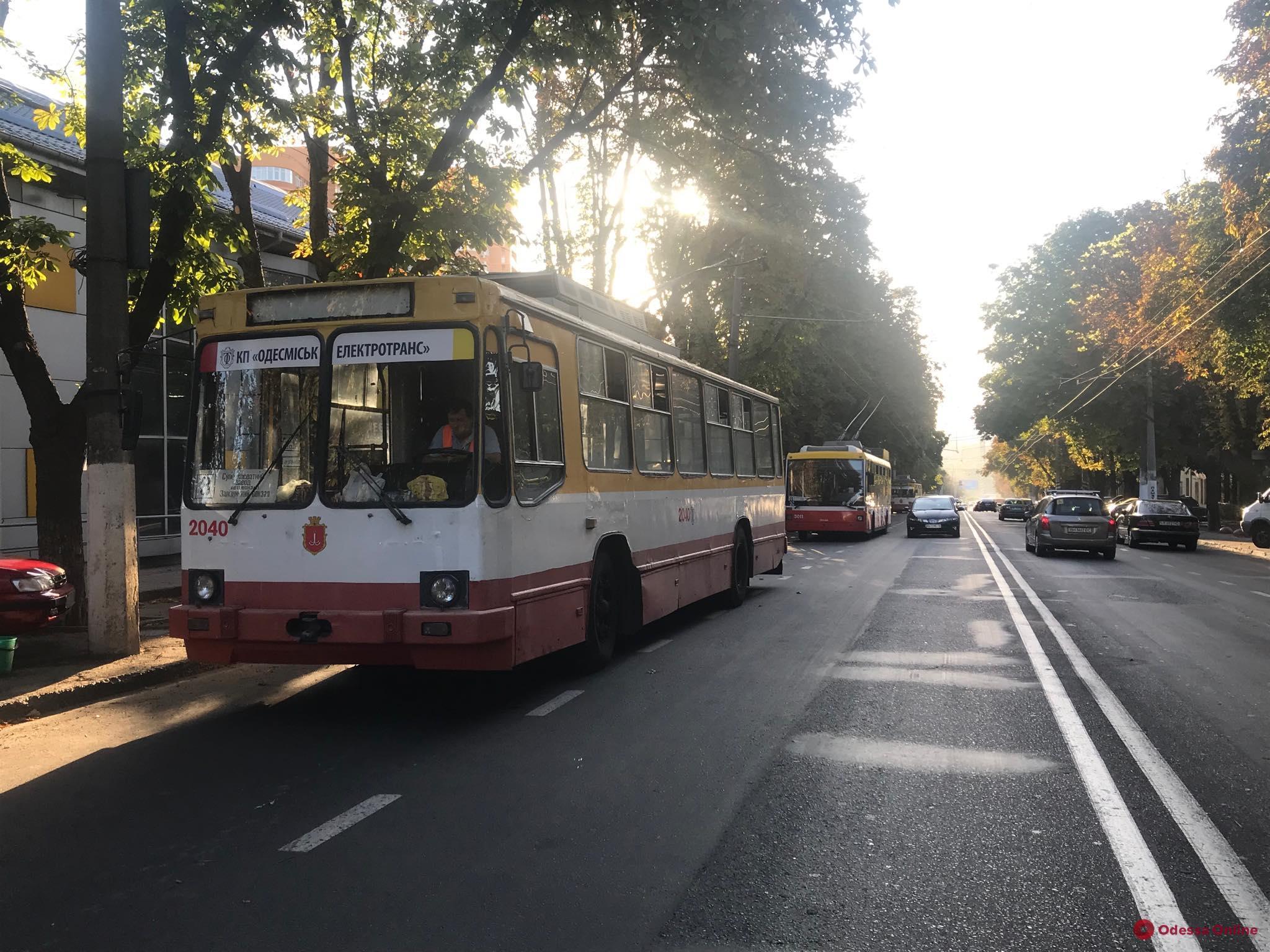 На Разумовской упавшая ветка парализовала движение троллейбусов
