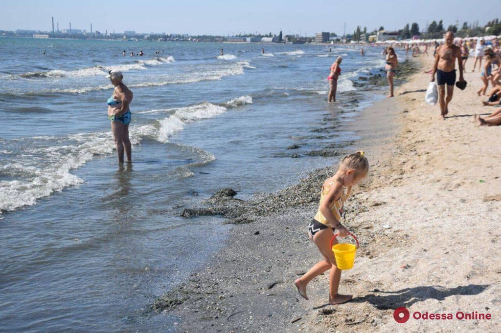 Побережье из водорослей, волны и сотни пляжников — бабье лето в Лузановке (фоторепортаж)