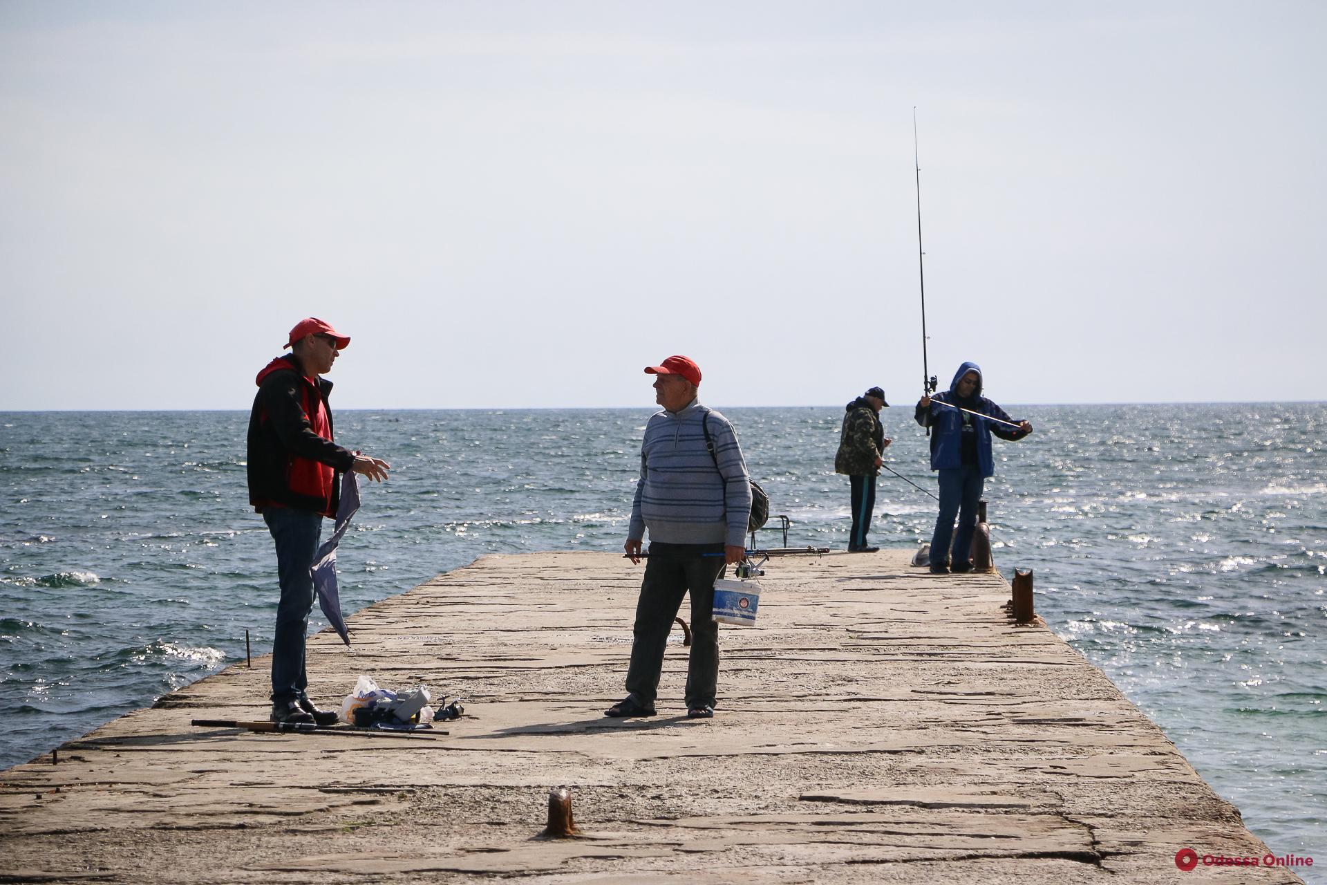 Сарган, ставрида, бычок и кефаль: что ловят одесские рыбаки в сентябре (фоторепортаж)