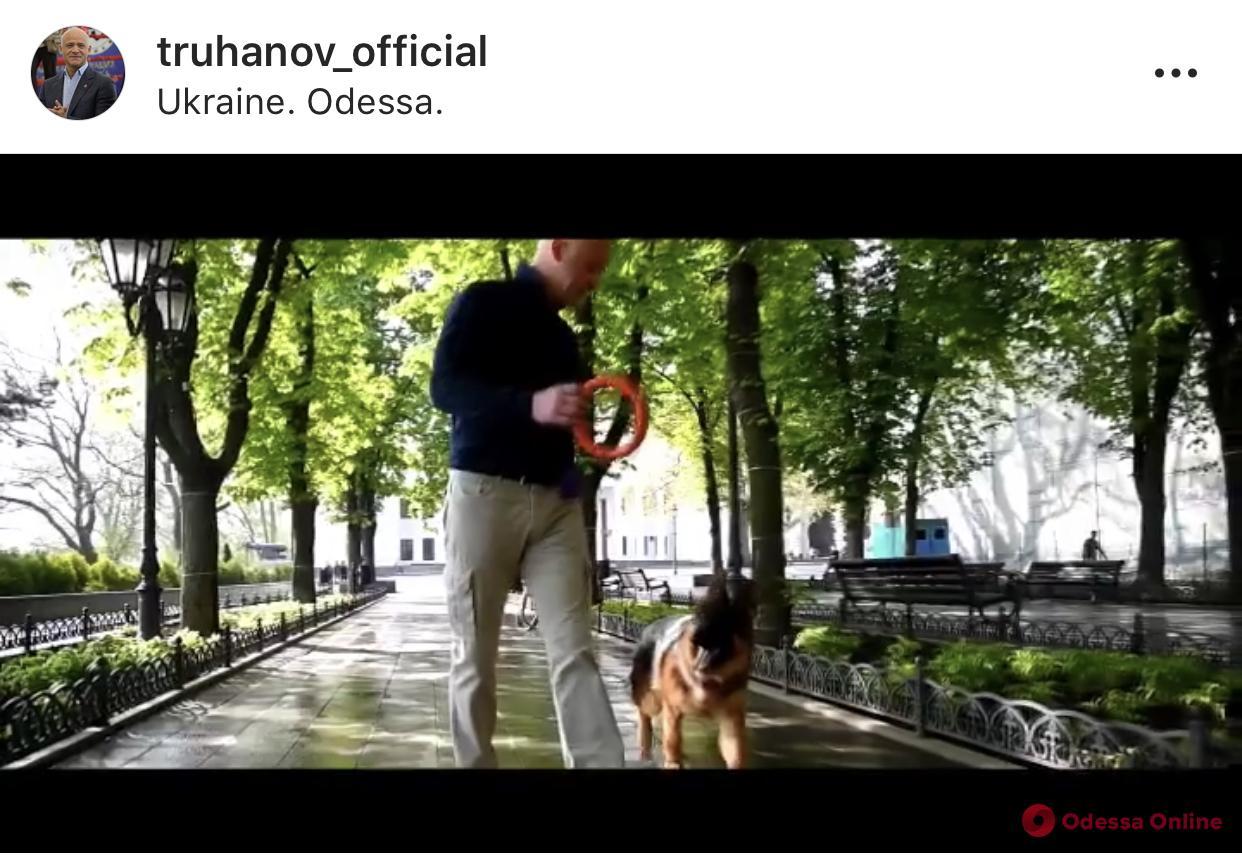 Ничто человеческое не чуждо: Труханов показал, как гуляет с собакой (видео)