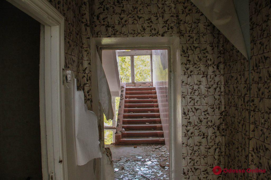 Отпечаток времени и огня: как выглядит заброшенный санаторий «Красные зори» (фоторепортаж)