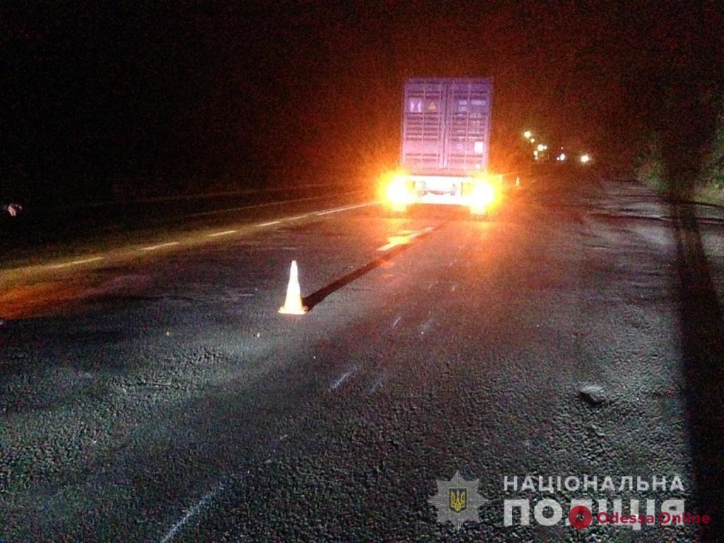 Под Одессой фура насмерть сбила пешехода