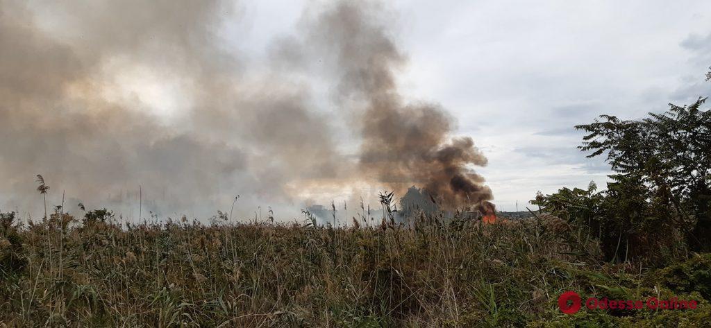 Вдоль Хаджибеевской дороги горит мусор (видео)