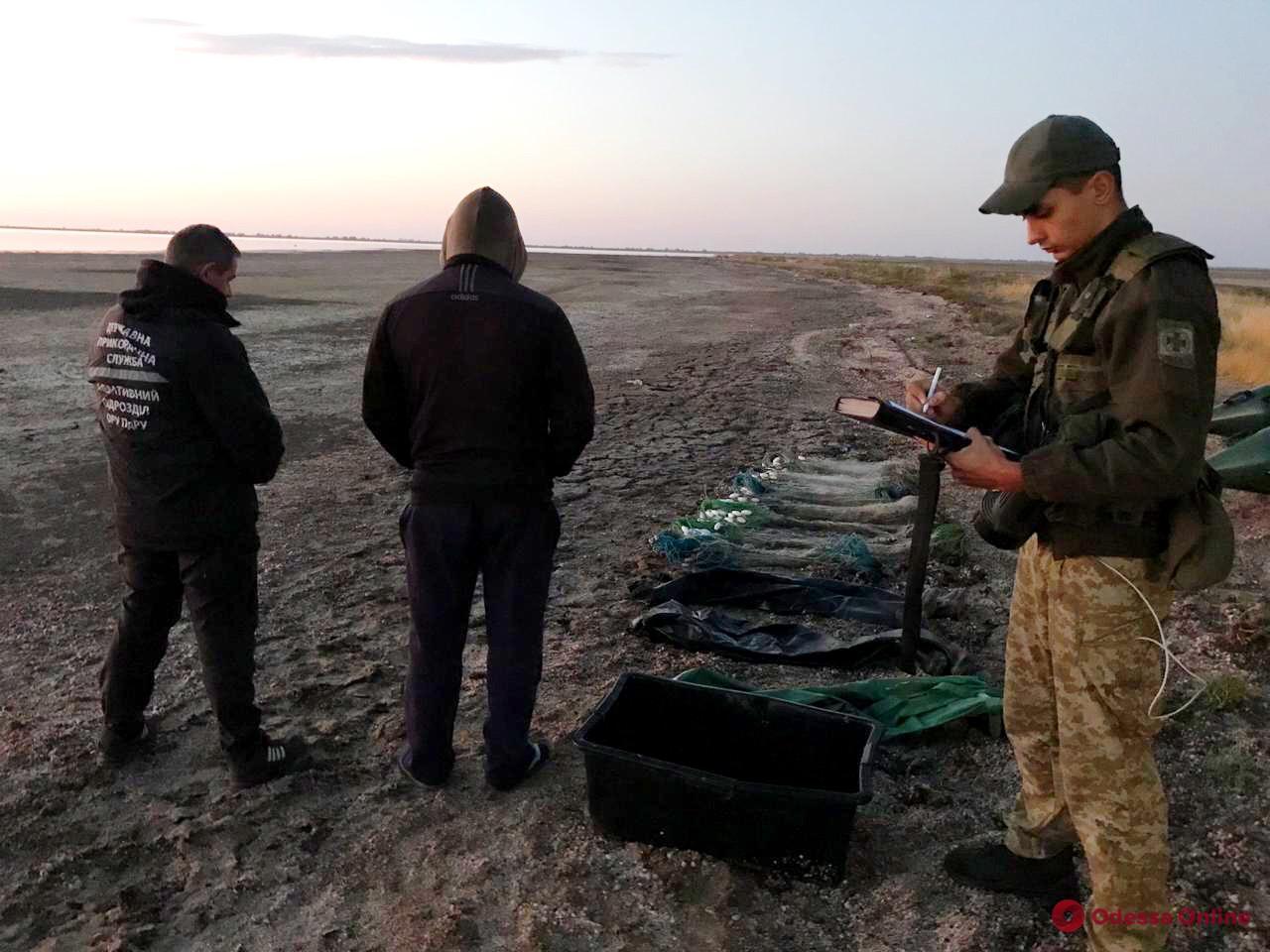 В Одесской области браконьеры наловили кефали на 90 тысяч