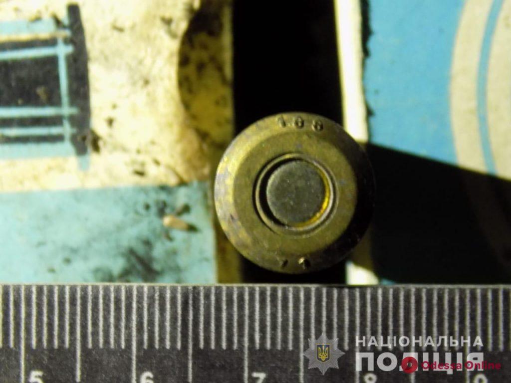 Лесник нашел почти полтысячи патронов возле стихийной свалки в Одесской области