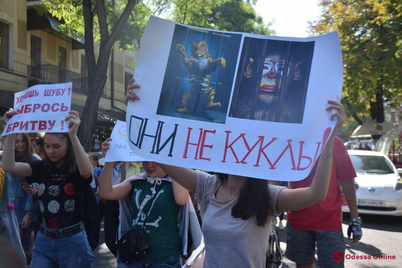 Одесситы вышли на всеукраинский марш против насилия над животными (фото, видео)