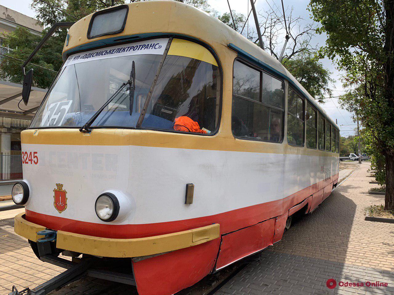 В Одессе дерево рухнуло на контактную сеть — не ходит трамвай №20
